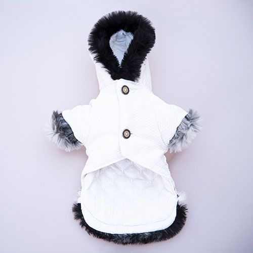 abrigo color blanco de perro