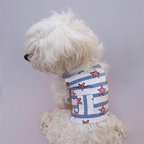 prendra camiseta para perro con estrellitas