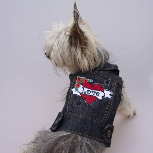 perro con chaqueta vaquera